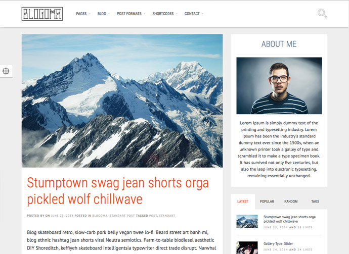 best-wordpress-themes-2015-05