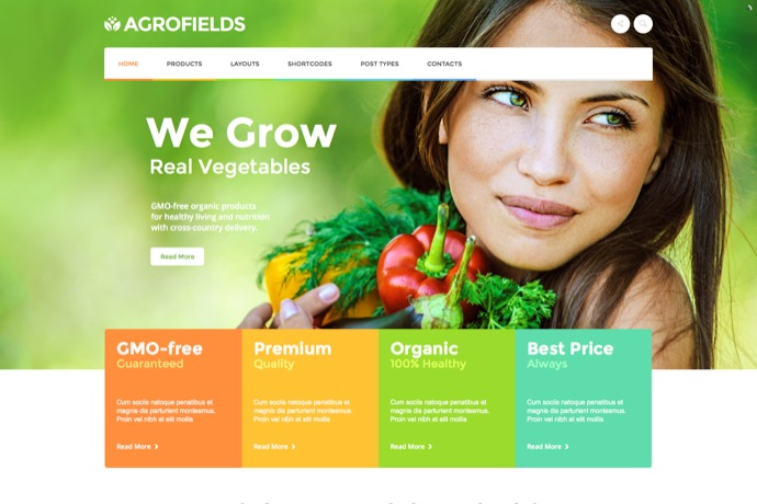 best-wordpress-themes-2015-07